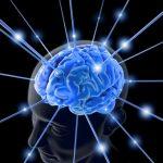 Ο ανθρώπινος εγκέφαλος δεν το βάζει κάτω – Αναπτύσσει νέα κύτταρα και μετά τα 80!