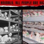 Για τα ζώα, όλοι οι άνθρωποι είμαστε Ναζί