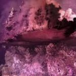 'That Can't Be Real!' Deep-Sea Explorers Find Trippy, Rainbow-Colored Wonderland
