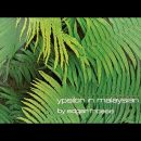 Edgar Froese - Epsilon In Malaysian Pale