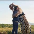 13 ιστορίες που αποδεικνύουν ότι τα ζώα έχουν ψυχή