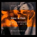 Steve Jansen / Richard Barbieri - Stone To Flesh