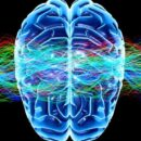 Evidence for Higher State of Consciousness Found in New Research