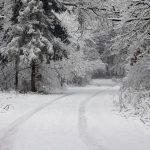 Δέκα στοιχεία για το χιόνι που ίσως δεν ξέρετε...