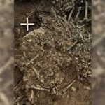 Ancient, Unknown Strain of Plague Found in 5,000-Year-Old Tomb in Sweden