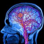 Τα μυστικά του ανθρώπινου εγκεφάλου που μάθαμε το 2018