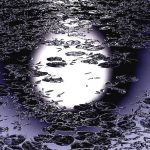 You Will Never See Me Fall - Joyce Alcantara
