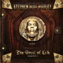 Father Of The Man - Stephen Marley