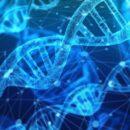 Ερευνητές κατάφεραν να συλλέξουν ανθρώπινο DNA από τον αέρα
